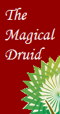 The Magical Druid